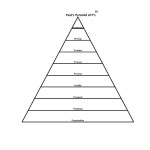 Pauls original pyramid of ps and TM
